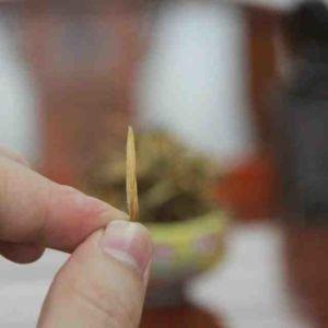 Черный китайский чай Юньнань Dianhong 702200 11