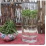 Зеленый чай Аньцзи Байча - высший сорт