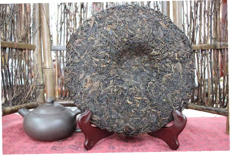 shen-puer-chudesnyj-chajnyj-kust-konya-drakona-long-ma-rui-ming-chang-tai-tea-group-1
