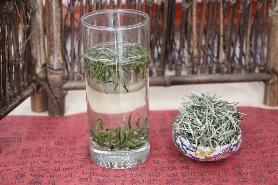 zelenyj-chaj-xue-zhu-gan-lu-1