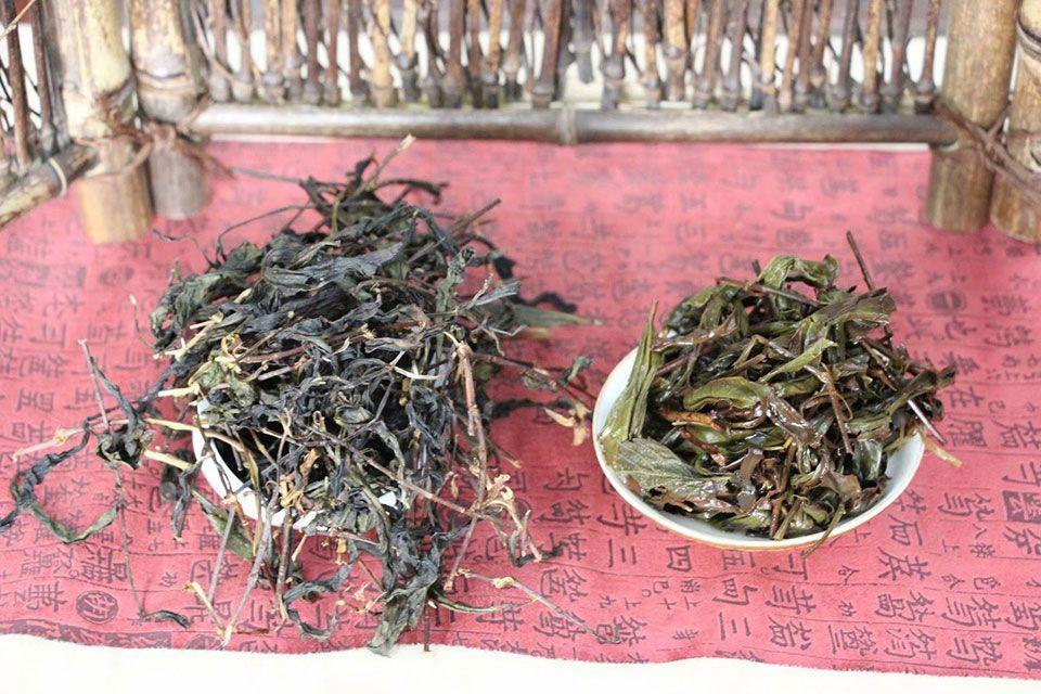 ulun-da-hong-pao-mao-cha-5